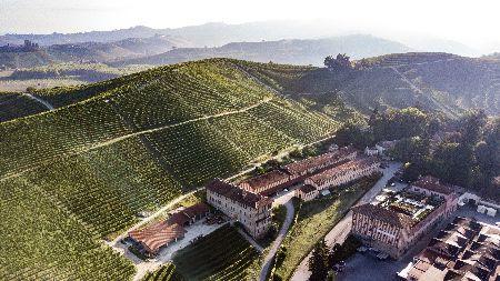 """Il vino """"verde"""" di Fontanafredda, simbolo di rinascita"""