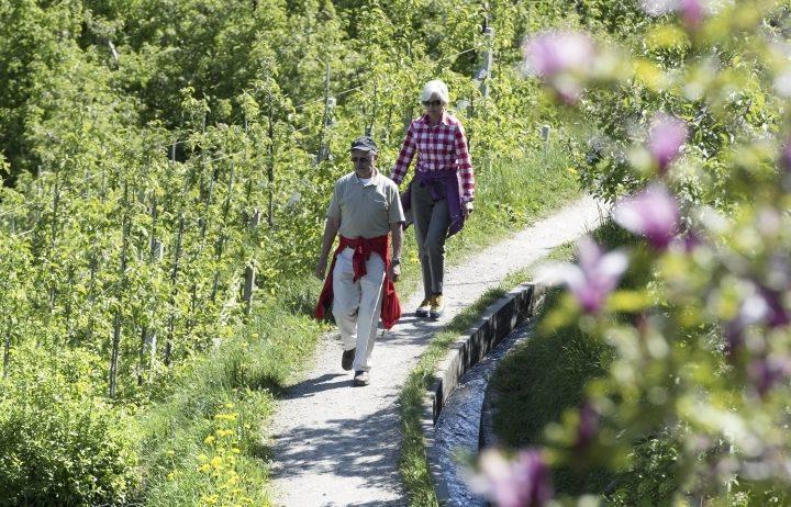 Alto Adige: passeggiate golose alla scoperta di Lana